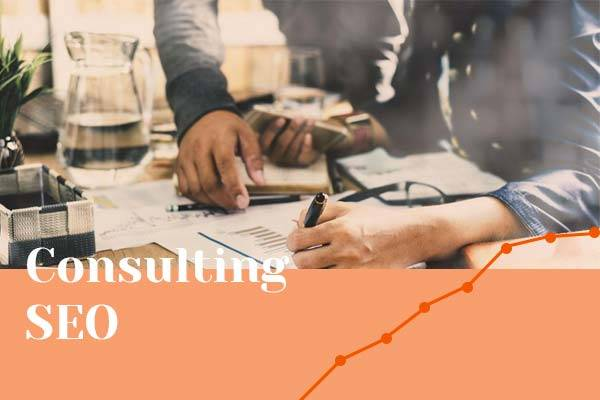 consulting-SEO-nice